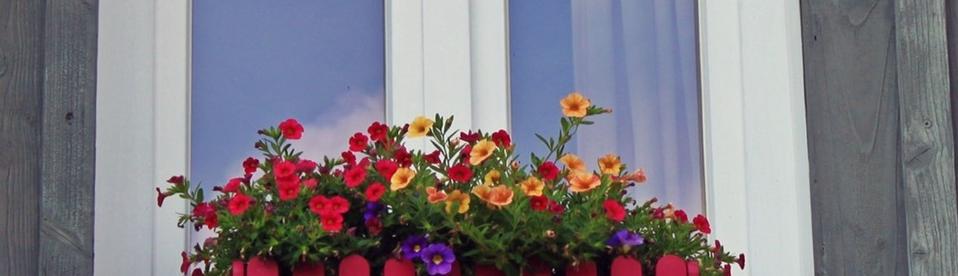 raam met planten ervoor